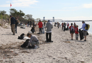NYC-Audubon-volunteers-at-Plumb-Beach